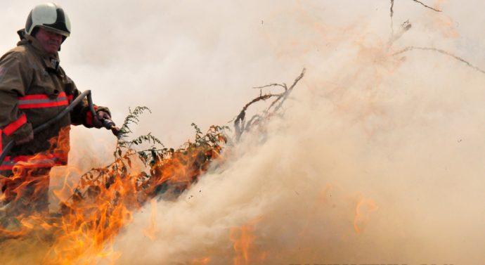 Пожар в Козлодуй